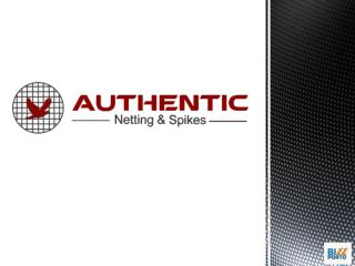 Authentic Netting And Spikes Pvt Ltd-ppt.pptx