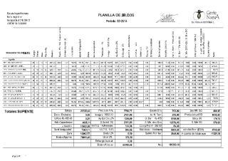 VM control firmas 1.pdf