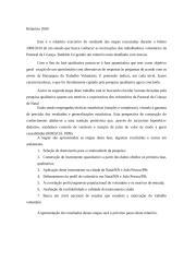 relatorio 2009_2010_executivo.doc