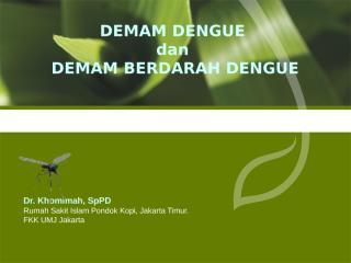 DD & DBD 171211.ppt