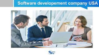 Software developement company  USA.pdf
